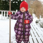 Silja måker snø
